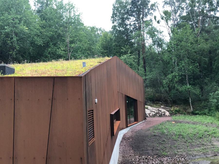 Vi inspireras av byggnader med corténstålsfasad och vegetationstak. Gröna tak minskar avrinningen av takvatten genom att vatten stannar kvar och avdunstar. Foto: Tobias Noborn